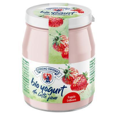 vipiteno yogurt bio fragola vetro gr.150