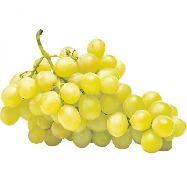 uva bianca ciocca italia