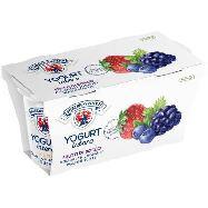 vipiteno yogurt frutti di bosco gr.125x2