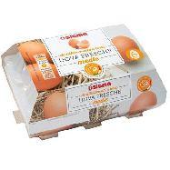sigma uova fresche da allevamento a terra pz 6 100% italiane