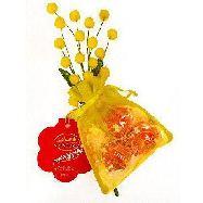 lindt sacchettino mimosa lindor gr.27