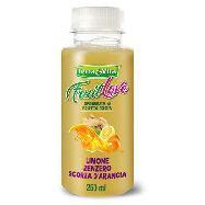 terra&vita frullato limone/zenzero/arancia ml.250