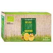 verdemio infuso bio zenzero/limone 20 filtri gr.36